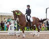 IMG_4439 (White Bear) Tags: horses horse animals russia contest russian equestrian equine artem dressage лошадь фестиваль артем конь кони новый i лошади спорт makeev приз кск век соревнования этап макеев конный выездка