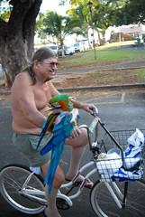 Bikes of Lahaina, Maui-3