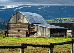 Teton Barn and Horses (Bill Wight CA) Tags: horses barn nationalpark wyoming tetons grandteton oldbarn billwight mountainhighworkshops copyright2010
