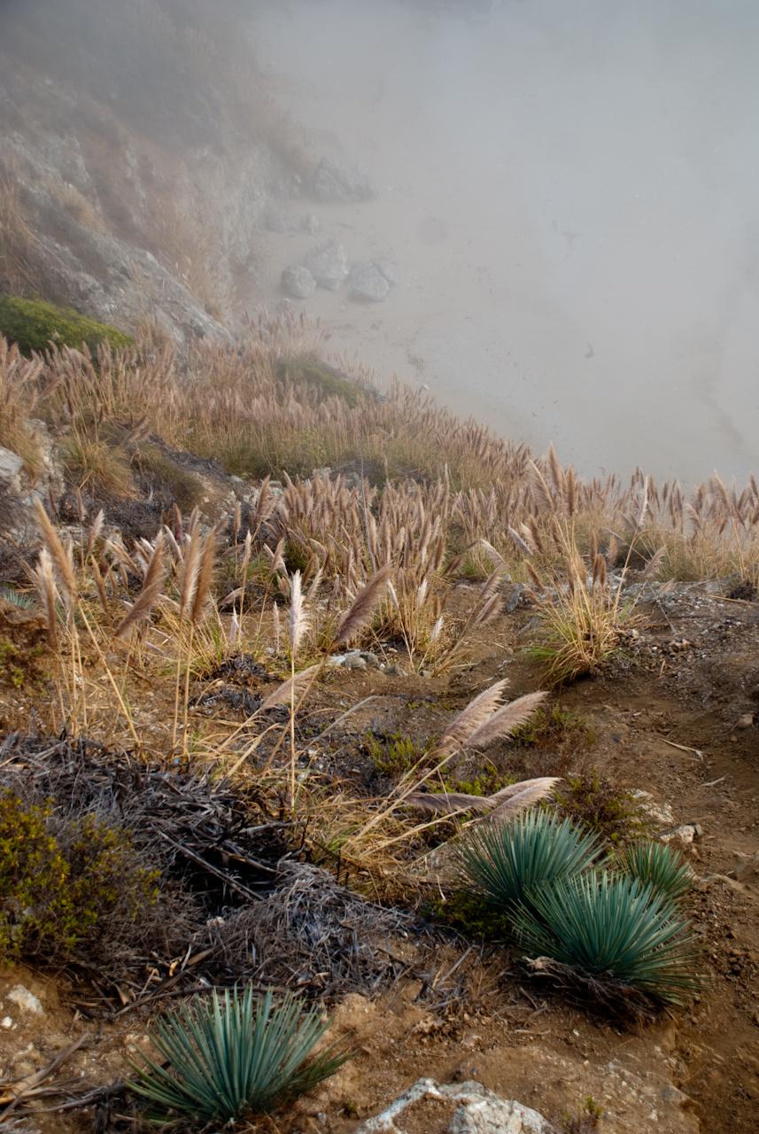 julia pfeiffer burns state park