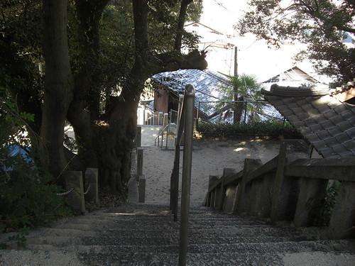 大竹市 阿多田島 画像9