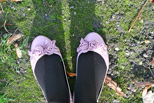 Shoes on moss