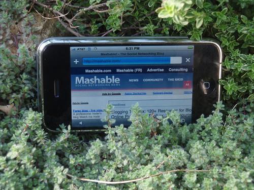 mashableiPhone.JPG