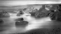 Labrador Mist - by Bram & Vera