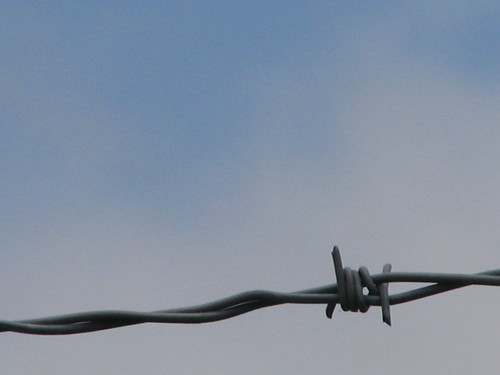 Barbed Wire Sky