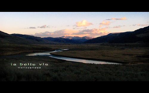 yellowstone- la belle vie