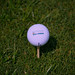 Brandon Morris Memorial Golf Ball