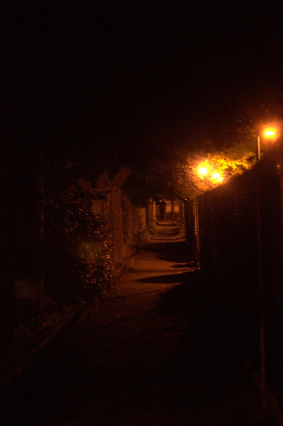 05-09-2010_looking_down_alley_at-nite_rs