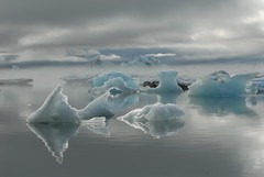 Glacial lagoon, Iceland (Suk Ng) Tags: iceland nationalgeographic glaciallagoon flickrbronzeaward heartawards betterthangood discoveryphotos photographyforrecreationgoldaward photographyforrecreationemeraldaward photographyforrecreationsilveraward photographyforrecreationbronzeaward