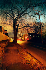 Let Our Hearts Think Again While We Fall So Far (Eric Rolph) Tags: road homes moon tree boston landscape evening streetlamp massachusetts watertown pleasantstreet