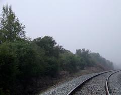 Rieles en la niebla I (Jorgelixious) Tags: railroad fog finepix fujifilm riel niebla ferrocarril s5600