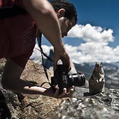 Extreme Close Up (Luis Montemayor) Tags: california sky usa mountain man closeup clouds square squirrel explore cielo yosemite nubes montaña hombre ardilla shuck acercamiento ricardoshuck goldenwinners