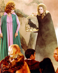 The Witches Council (twitchery) Tags: halloween television tv 60s comedy witch magic 70s abc samantha witchcraft tabitha darrin supernatural sitcom bewitched endora sorcery erinmurphy elizabethmontgomery agnesmoorehead dickyork