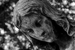 Cherub (MR@tter) Tags: bw cemetery graveyard geotagged deutschland angle bokeh quote cologne kln cherub bible nrw engel melatenfriedhof tamron1750