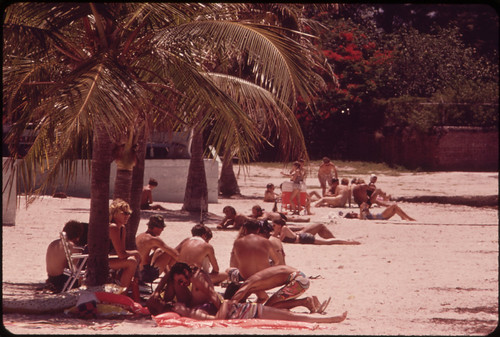 Palm-Shaded Beach at the Southernmost Point of the United States.