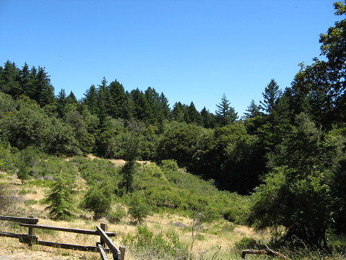 Skyline Trail at Sunnyvale Mountain trailhead