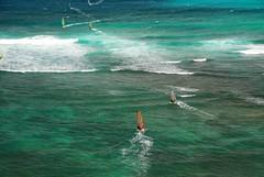 Windsurfers - Oahu (W.G. Dayton) Tags: hawaiiphotos