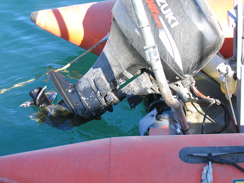 Embarcacion de rescate 005