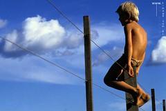 Portiflio, 1-06, menino loiro na crca de arame, esperana,ft Kim-Ir-Sen (kimirsenphoto) Tags: cu famlia cavalo araguaia ndio esperanca