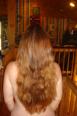 35:366 Hair. (LisaNH) Tags: selfportrait me hair longhair explore 365days i500 hairscapes