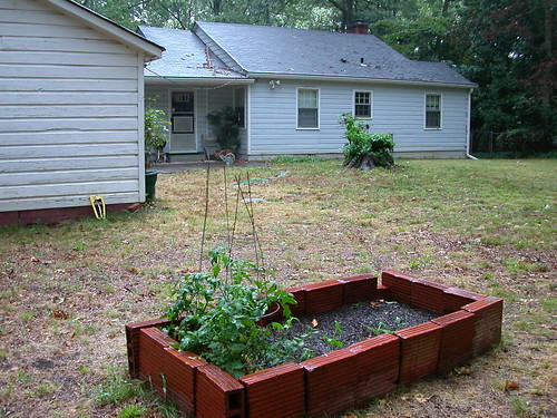 raised bed and house