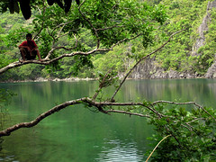 Tayak Island lagoon (ferdzdecena) Tags: beach islands philippines lagoon bicol province caramoan camarinessur tayakisland