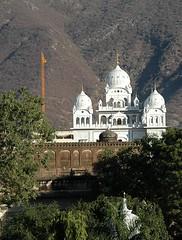 Gurudwara Singh Sabha (and not the Brahma Temple as previously noted) Pushkar, Aj