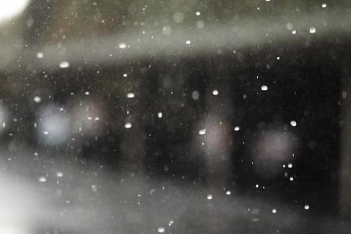 Rainy Day-004972