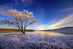 Frozen (scott masterton) Tags: winter light cold ice water field magazine scott landscape 1 scotland frozen frost photographer pentax year scottish front explore cover loch sutherland entry fascinating masterton highest naver sigma1020mm 2011 commended k100d altnaharra takeaview