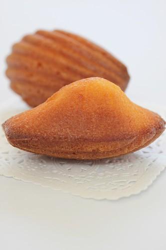 Kumquat5