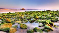 Rocas Verdes (MaRuXa fotografa) Tags: verde canon mar playa galicia rocas dunas maruxa corrubedo maruxa2