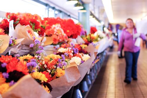flowers-0191