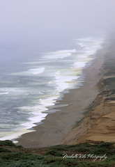 View from Point Reyes (Michellekiba) Tags: park panorama creek state sonoma roadtrip mendocino redwood prairie fortbragg californiacoast lostcoast hiway1 compositephotos californiaphotographer womeninphotography michellekibaphotography canond50user