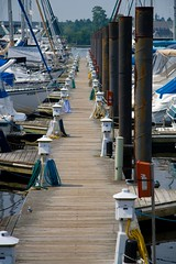 New Bern Marina Docks