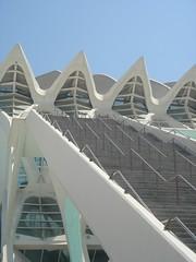 CASCADA DE ESCALONES. OUTSIDE STAIRS (José Manuel Morcillo) Tags: valencia museum stairs arquitectura calatrava museo sciences escaleras arquitecture escalones ciencias