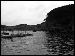 Barcas en cala (Lzaro) Tags: ocean sea beach beautiful boats countryside mar agua rocks playa paisaje reflejo hermoso barcas pesca costabrava rocas mediterrneo pescadores ocano
