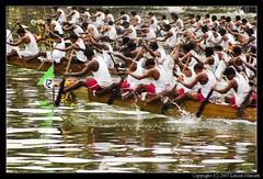 Boat Race (lenish) Tags: bws boatrace alleppy allapuzha bangaloreweekendshoots vallamkali lenish lenishnamath nehruboatrace2007 nehruvallamkali2007 nehruvallamkali august11triptoalappuzha bwstriptoalappuzha