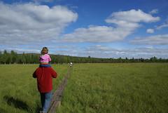 Tornant de la granja de rens