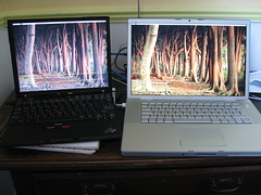 Thinkpad X40 vs MBP