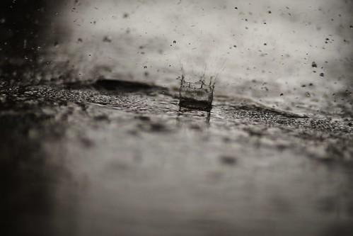 Rainy Day-004980