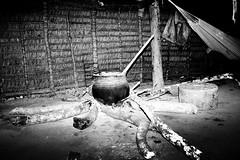 Inside maloca of Marubos (TomekY) Tags: parque portrait food home america fire amazon indian cook tribal basin meal latin latina tribe population indios ethnic 2008 indigenas indio prepare amazonas flore amazonia tribu amazonie faune manioc amerindien etnia indigenes amerique autochtones ethnie amazonien javari yawari sudamerique riojavari puebles marubos atalayadonorte povoindigena amazonstribe bassinamazonien bresilindidenne