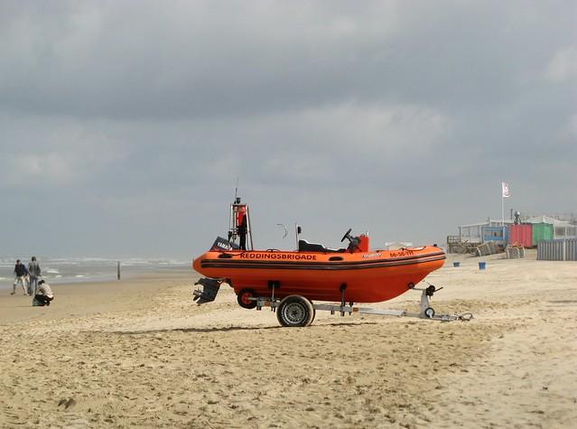 washed ashore?