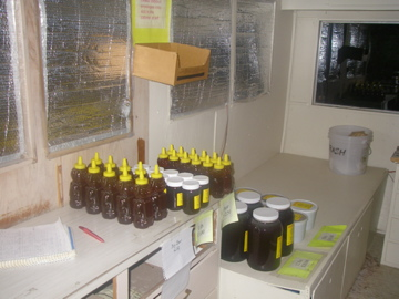 inside honey truck.jpg