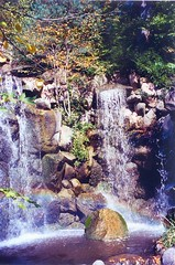 Anderson Japanese Gardens, Rockford, IL (Lyle58) Tags: autumn trees nature wet water japanese japanesegarden waterfall rainbow rocks scenic tranquility serenity serene tranquil andersongardens