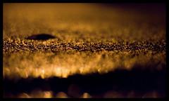 Slug on the loose (.drew (Andrew Kelly)) Tags: street orange canon 50mm scotland streetlight escape dof slow low drew ambient slug f18 slimy sandend 400d andrewkelly slithereing