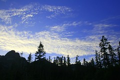 IMG_0130 (Andrew E. Larsen) Tags: blue trees tree fall silhouette clouds backlit digitalrebelxt papalars andrewelarsen