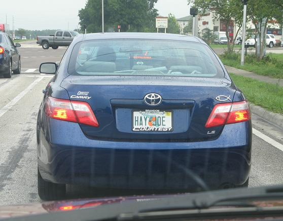 Hay Joe License Plate