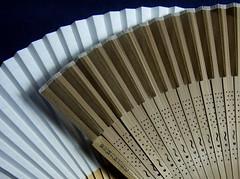 Fan and fan