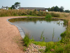 Taraloka gardens and pond 2