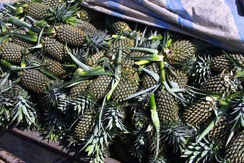 Mess o'pineapples